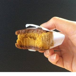 ginger pumpkin ice cream sandwich