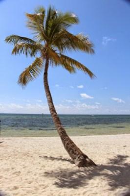 Bahia Honda State Park - Key Florida