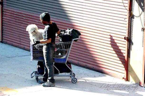 Menschen von Los Angeles - People of LA