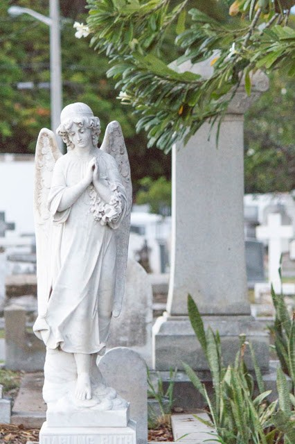 Der Friedhof von Key West - dipitontour
