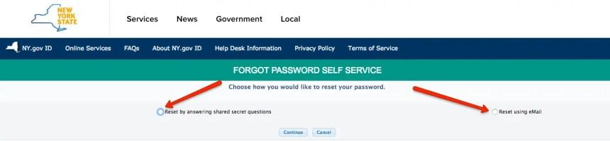 """NY Mybenefits.ny.gov password reset step 2"""