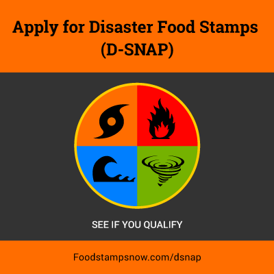 d-snap application form - food stamps now