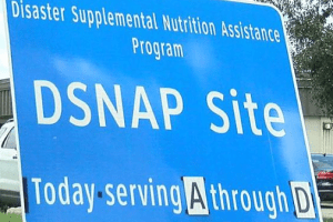 """Apply for Disaster Food Stamps in South Carolina"""