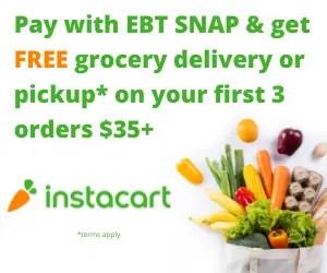 InstaCart SNAP EBT Ad 2 300x250