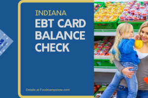 """Check Your Indiana EBT Card Balance online"""
