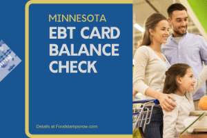 """Check Your Minnesota EBT Card Balance online"""