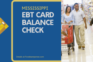 """Check Your Mississippi EBT Card Balance online"""