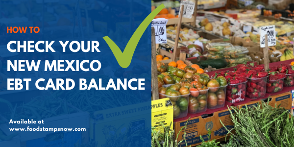 How to Check New Mexico EBT Card Balance