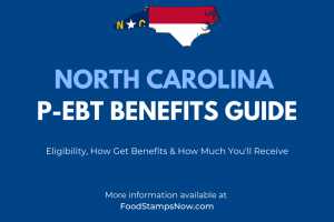 North Carolina P-EBT Benefits Guide