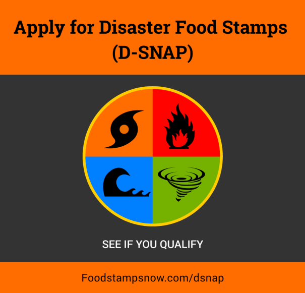 """""""How to apply for disaster food stamps online"""""""