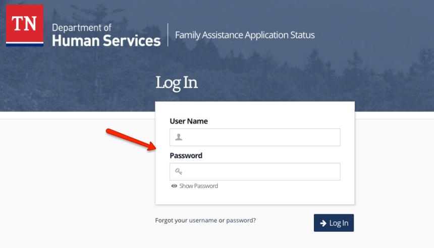 """Tennessee DHS Account Login - 1"""