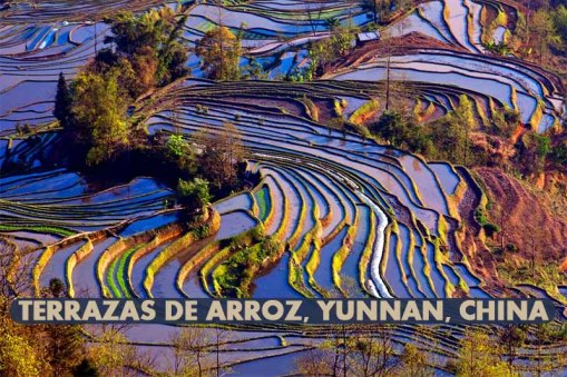 Terrazas-de-arroz-Yunnan-China