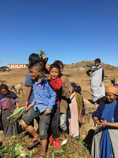 School children and teachers making compost in Laitsohpliah village, East Khasi Hills, with the support of NESFAS.