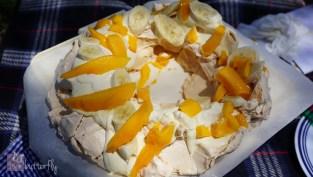 COAFT Mango 4