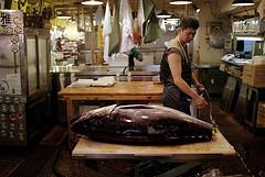 Tsukiji photo