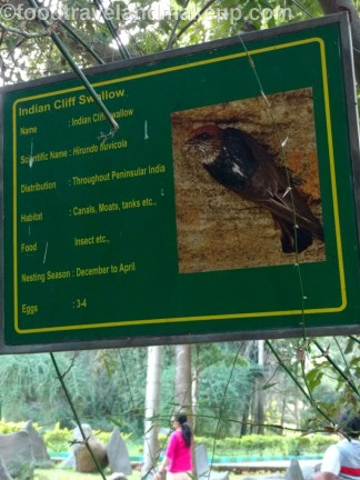 mysuru bird sanctuary @ftm (13)