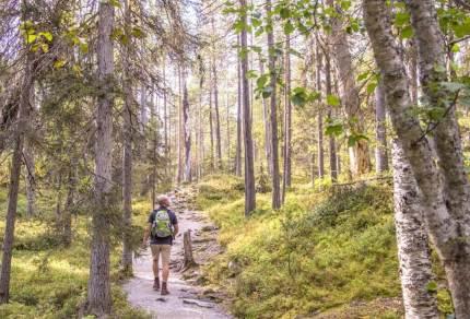 Nationaal park Oulanka in Finland: Deze berenroute wil je als hiker gelopen hebben