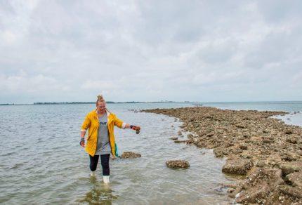Ontdek het Zeeuwse  Goes vanaf het water