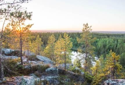Road trip Zweeds Lapland in een week