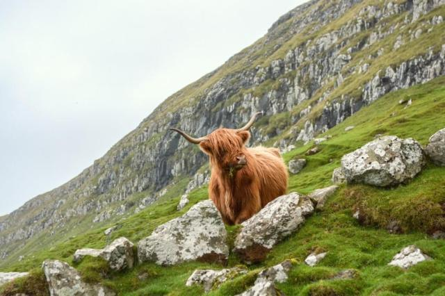 auto-huren-Schotland