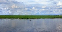 chobe-river-11-boats-etc-19