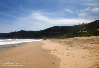 wilderness-beach-2