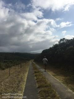 kaaimans-accom-walk-9