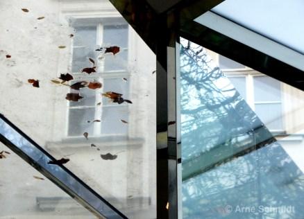 Remains of autumn - Café Bravo, Berlin Mitte, January 2013