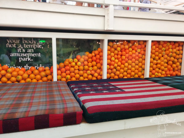 Patriotic cushion seating with oranges in display case at Anaheim