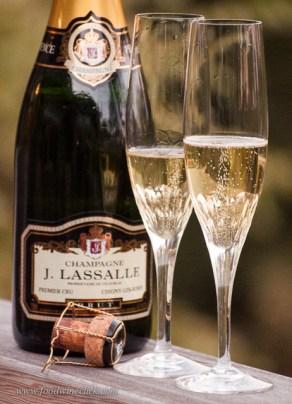 champagne_day_stirfry_20131025_32