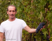 Winegrower Franco Rocca is proud of his grapes.