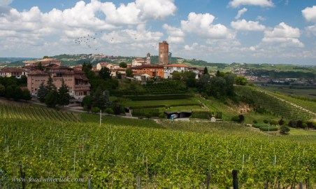 View of Barbaresco