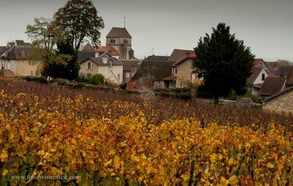 Looking down into Volnay