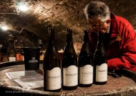 Bourgogne Rouge and Blanc, Volnay and Pommard 1er Cru