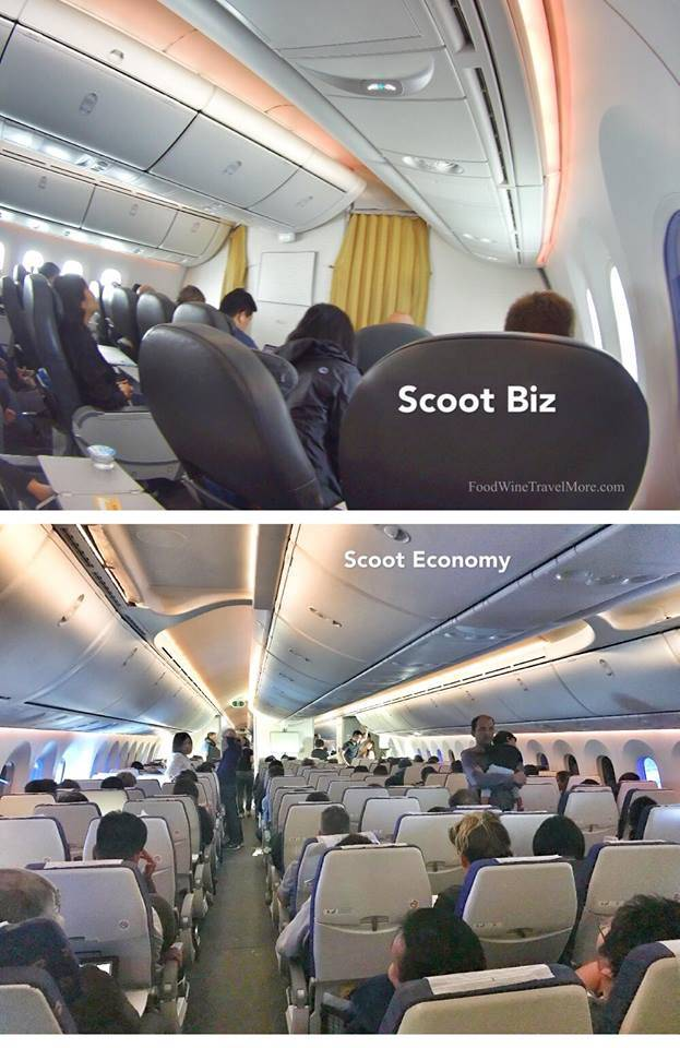 Scoot Biz VS SCoot economy Cabin