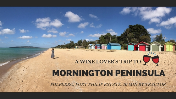 A wine lovers trip to mornington peninsula