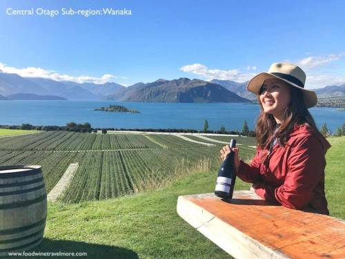 Rippon vineyard central otago wanaka wine subregion
