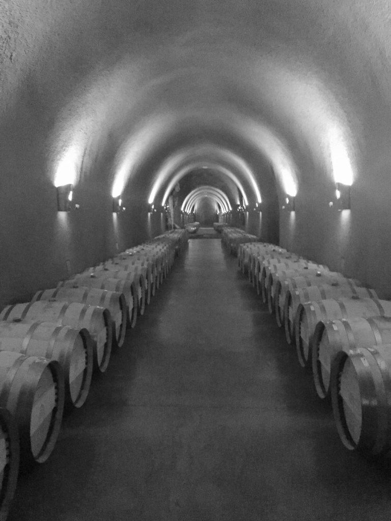 Rows of wine barrels in the caves at Jarvis winery in napa valley | adventures in wine country on foodwithaview.com