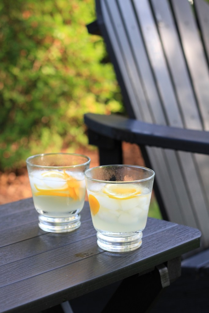Frank Meyer Experiments by a black adirondack chair | photo by Jenn Kosar | summer cocktails with the drunken botanist | foodwithaview.com