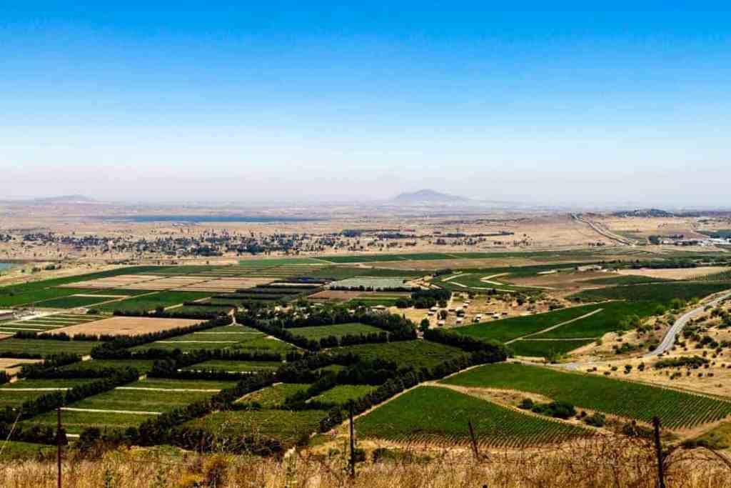 The view of the Syrian Border from atop Mount Bental