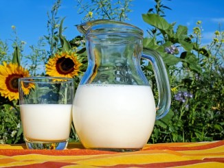 Milk in a jug and glass with sunflowers in background.