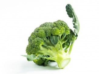 A broccoli floret on a white background.
