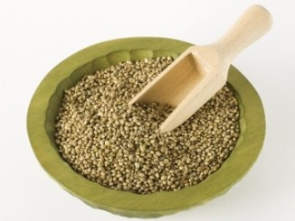 An olive green bowl of hemp seeds with a scoop inserted into the middle. White background.