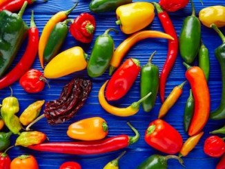 A selection of colourful chilli peppers on a blue table background.