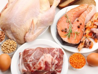 Food high in protein close-up. Excess of protein in the diet causes long term medical issues.