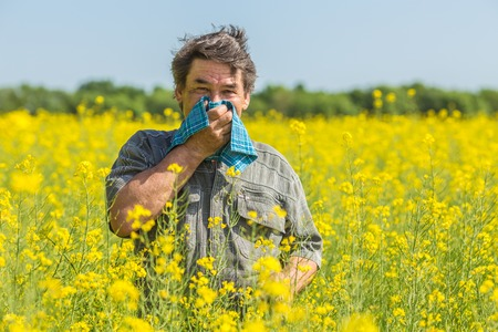 27724313 - man in field blowing his nose and suffering from hay fever.