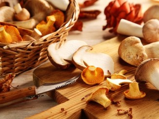 45809536 - preparing assorted fresh oyster or pleurotus mushrooms in the kitchen slicing them on a chopping board for healthy vegetarian autumn cuisine