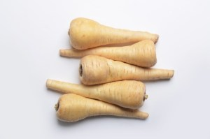 Raw parsnips, Pastinaca sativa, from directly above on white background