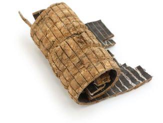 du zhong, eucommia bark, traditional chinese herbal medicine