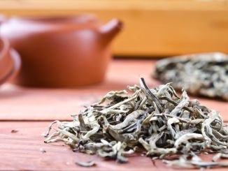 56293649 - chinese pressed white tea, silver needle. selective focus